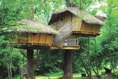 Tree house hotel in France