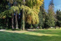 Park of Villa Erba | Cernobbio #enjoylarioville