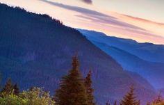 Spauda Darbėnai - sodybos ir komfortas, poilsis, žvejyba, medžioklė, gamta…