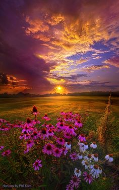 """Into The Moment"" Wisconsin Horizons By Phil Koch. http://phil-koch.artistwebsites.com"