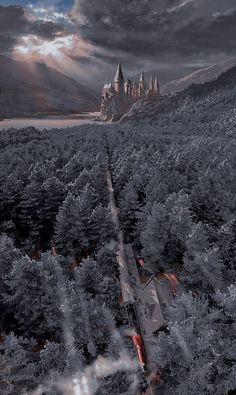 Harry Potter Collage, Harry Potter Background, Harry Potter Poster, Mundo Harry Potter, Harry Potter Icons, Harry Potter Tumblr, Harry Potter Pictures, Harry Potter Cast, Harry Potter Universal