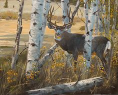 deer watercolor paintings | Mule deer Painting by Scott Thompson - Boulder Mule deer Fine Art ...