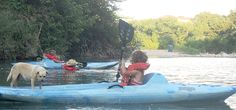 Guadalupe Canoe Livery: Tubing above Canyon Lake!  15 degrees warmer water and option of longer float times