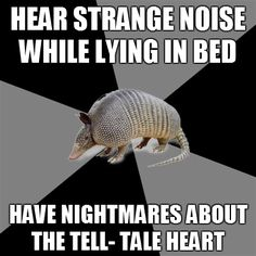 What do you do with a degree in English? Guess I'm going to find out - English Major Armadillo Grammar Help, Grammar Memes, Book Worms, Just In Case, I Laughed, Nerdy, Laughter, At Least, Lol