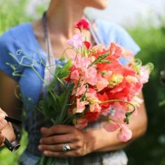 Giving Flowers, Cut Flowers, Champs, Nothing But Flowers, Flower Farmer, Summer Garden, Planting Flowers, Flower Gardening, Gardening Tips