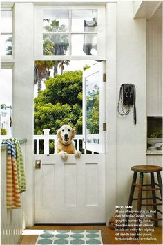 Dutch door for the back door....I'll also take the pooch and the vintage phone on the wall.