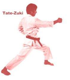 fb451d0d8 21 Best Karate images in 2017   Karate, Martial art, Martial Arts