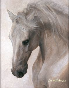 "Horse Art: White Horse Painting ""Free Spirit"" 2 sizes FRAMED OR ROLLED archival prints"