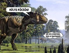 I love T-Rex humor! Funny Shit, The Funny, Funny Jokes, Funny Stuff, Funny Captions, Funny Animal Pictures, Funny Images, Funny Animals, Random Pictures