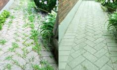 No need to buy chemical weedkiller!  Use this 100% natural weed killer!