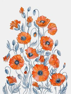 Red Poppies watercolor art Print A4 or A3 botanical by RUTA13