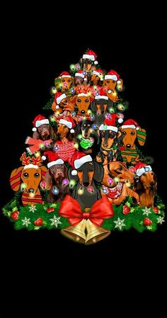 All the things we all love about the Vigilant Daschund Pup Dachshund Facts, Dachshund Puppies, Dachshund Love, Daschund, Chiweenie Puppies, Christmas Animals, Christmas Dog, Vintage Christmas, Christmas Crafts