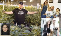 Meghan's nephew is a cannabis farmer who is planning a new drug called Markle's Sparkle
