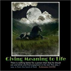 """Giving Meaning to Life   The broad question that the writer of Ecclesiastes seeks to answer is, """"Is there any meaning to the time that I spend in this world?"""" We put on a man's tombstone that he was born on a certain date and that he died on a certain date. Between these two poles of time we live our lives. The basic question is, """"Does my life have meaning?"""" A common refrain echoed in Ecclesiastes is that there is futility, vanity, and """"nothing new under the sun."""" If our lives begin under…"""