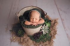 Newborn with succulents Newborn Photography Setup, Photography Studio Setup, Photography Themes, Children Photography, Newborn Posing, Newborn Shoot, Newborn Pictures, Baby Photos, Baby Portraits