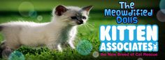 New month, new charity: in September we are supporting Kitten Associates, they are the new Breed of Cat #Rescue. Not only do they help kittens and #cats from high risk situations, such as death row at Kill Shelters, but they also provide Web Based Communication Tools for small, struggling Rescue Groups & Animal Shelters. For more information about this great #charity, visit their Facebook page or website: http://www.kittenassociates.org/ #ModifiedDolls #NonProfit #SuportingCharities