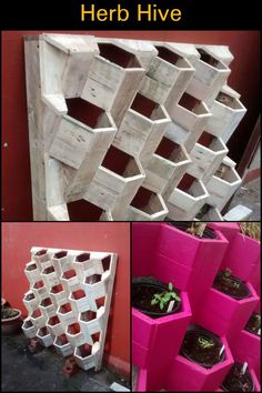 Grow Your Own Herbs In This Gorgeous DIY Herb Hive!