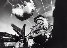 1950s research into effects of zero-g by throwing cats around the cockpit of a…