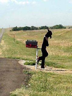 Cowboy country mailbox.  http://www.pocketbinaries.com/ Free usenet, usenet images  #funny #humor #haha