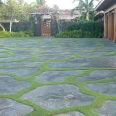 Hawaiian driveways ( Idea for redoing drive way/walk ways)