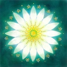 'flower mandala'