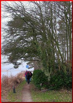 Filmpje KLIK HIER   (Werkt zondag 19 Febr. om 17.00u)           Zaterdag 18 februari liepen we samen met 657 andere wandelaars de 9e FLAL wa...