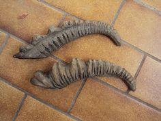 Tutorial Ermelyns Creatures: Horns in 10 steps
