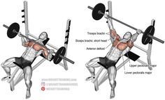 The incline reverse-grip barbell bench press is arguably the most effective exercise for building your upper pectoralis major!
