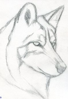 20 Easy Drawing Tutorials For Beginners – Cool Things To Draw Step . 20 Easy s for Beginners – Cool Things to Draw Step drawing tutorials for beginners - Drawing Tutorial Easy Drawing Tutorial, Easy Drawing Steps, Step By Step Drawing, Wolf Drawing Easy, Step By Step Sketches, Sketches Tutorial, Easy Pencil Drawings, Art Drawings Sketches Simple, Easy Drawings Of Animals