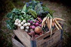 Les bons légumes