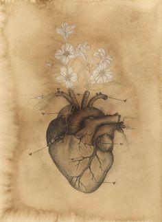 PHILOSOPHY OF HEART Vintage Anatomy Study - Oleanders & Heart Art Print