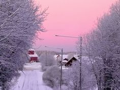 Winter evening by Sirka B - Aesthetic Photo, Pink Aesthetic, Imagines, Photos, Pictures, Winter Wonderland, Beautiful Places, Scenery, Earth