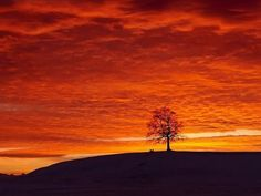 fotos lindas da natureza