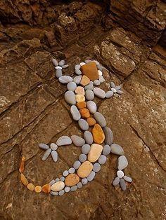 Rock Lizard More