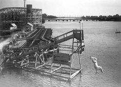 Diving Horse - Early photos of amusement parks - Pictures - CBS News