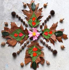 Leaf and petal mandala By DawnsRays Mandala Nature, Flower Mandala, Mandala Art, Land Art, Ephemeral Art, Mudras, Organic Art, Nature Artists, Autumn Art