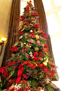 Show me Decorating, Towering magestic tree http://www.app.showmedecorating.com