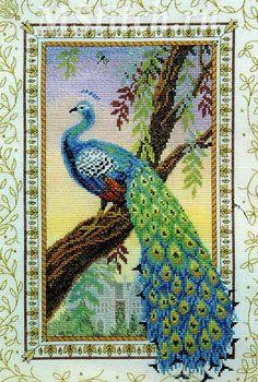 "art. CC80455 Cross stitch kit Anchor ""Renaissance Peacock"""