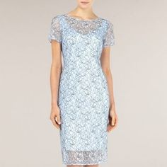 Alexon Light Blue Lace Dress- at Debenhams.com  for mum