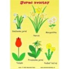 Jarné kvety Urn