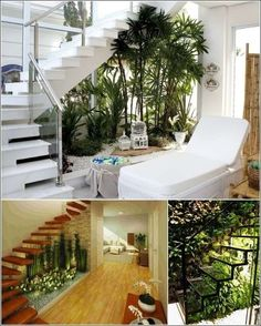 Stairs n indoor Garden #Interiorgarden