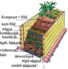 Most készítsünk magaságyat! Stone Garden Paths, Garden Stones, Raised Vegetable Gardens, Raised Garden Beds, Back Gardens, Outdoor Gardens, Back Garden Landscaping, Fire Pit Area, Garden Park