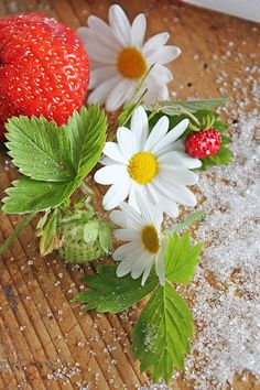 Strawberries and Daisies, Welcome to Summer, Visit for more yummy photographs.  Cheerful white with red accents keep things light and cheerful for summer time. ~MWP - VIBEKE DESIGN: Sweet Strawberry !