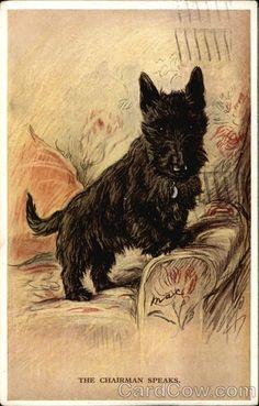 The Chairman Speaks - Scottish Terrier