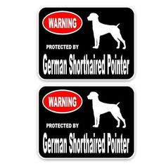 GERMAN WIREHAIRED POINTER PAW LOVE PET DOG METAL LICENSE PLATE FRAME TAG HOLDER