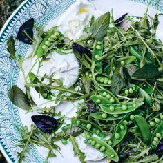 Snap peas, Sugar snap peas and Potato salad on Pinterest
