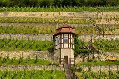 Saale - Unstrut: eine Präsentation des Weinanbaugebiets (2013) Germany, House Styles, Home Decor, Holiday, Wine, Round Round, Vacation, Decoration Home, Vacations