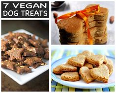 In celebration of National Dog Day, we proudly present you this roundup of seven homemade vegan dog treats good enough for humans!