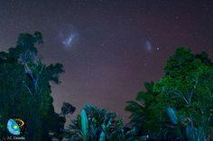 Large and Small Magellanic Clouds, Kuranda National Park, Queensland, Australia