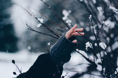 Winter Photography, Winter Time, Anastasia Romanov, Tumblr, Jack Frost, Yuri Katsuki, Winter Wonderland, Bella Swan Aesthetic, Yuri On Ice